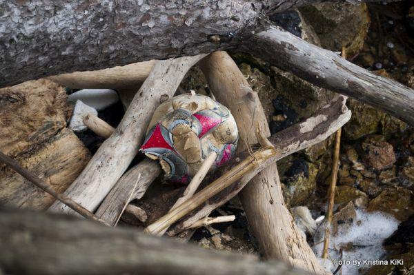 Čišćenje otoka Mljeta 2015.